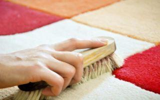 Как почистить ковер от запаха мочи в домашних условиях