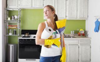Как заставить себя заниматься работой по дому, простые советы