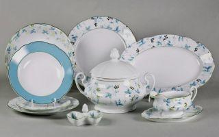 Основные принципы ухода за фарфором, как мыть фарфоровую посуду