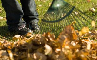Методика уборки дворовых территорий