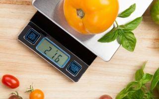 Как правильно осуществлять выбор кухонных весов, основные критерии