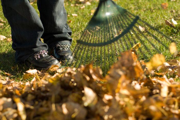 Осення уборка листвы во дворе