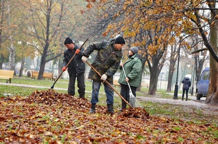 КОмандные работы по уборке на улице
