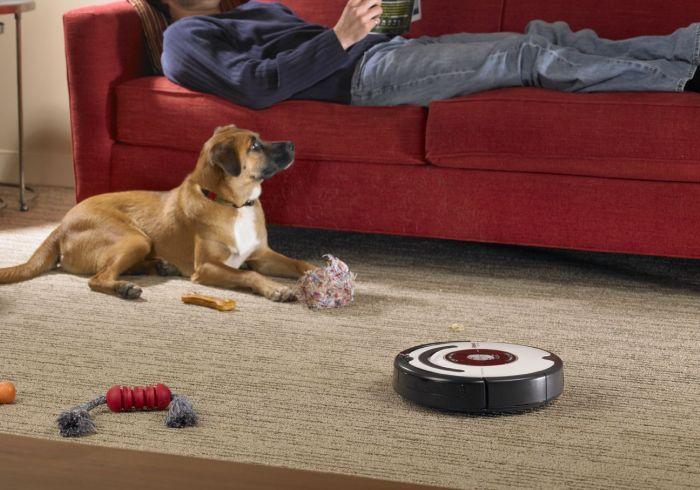 Взаимодействие домашних животных с машинами для уборки