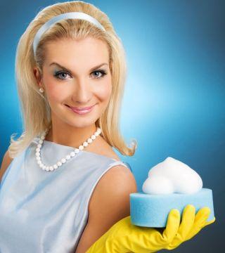 Типичная современная домохозяйка