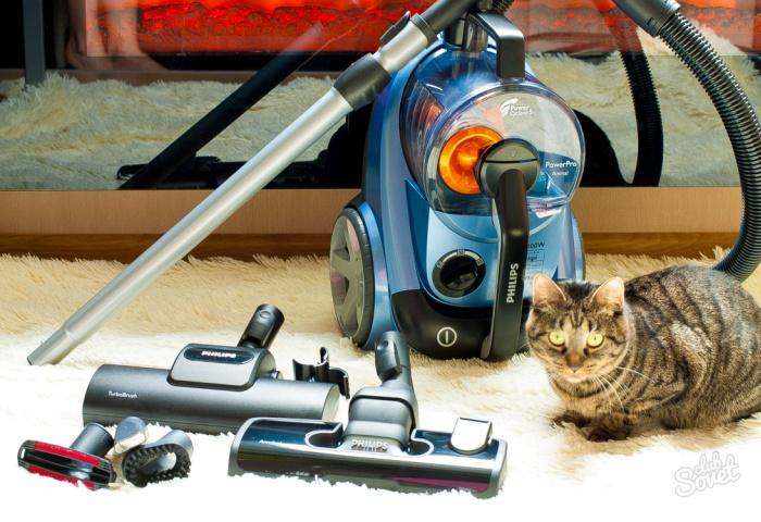 Моющий пылесос и кот