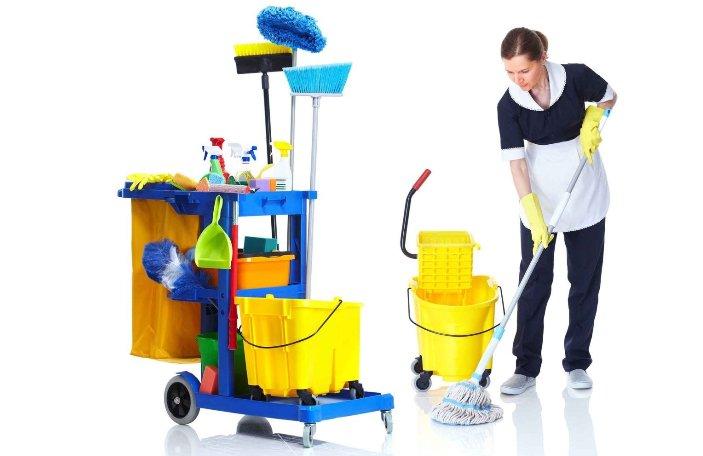 Профессиональнй инструмент для уборочных работ