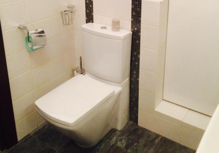 Уборка туалета, мытье унитаза