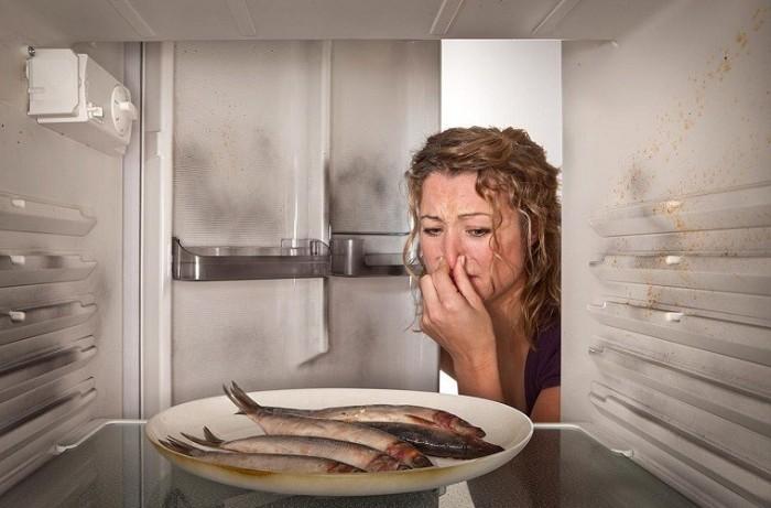 Ужасный запах от неправильно хранящихся продуктов