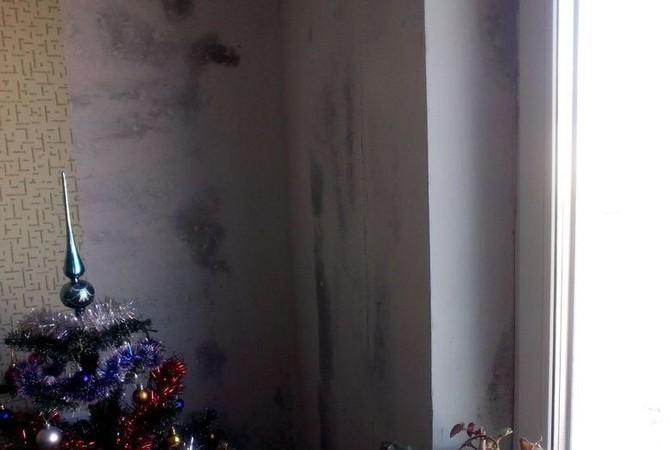Ужасное состояние стен в доме зимой