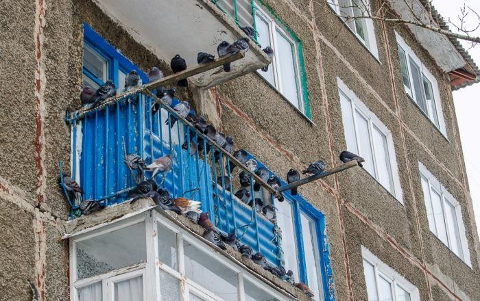 Неприятная ситуация на балконе
